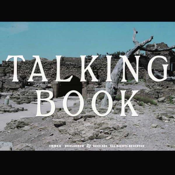 Talking Book II by Talking Book