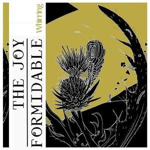 Whirring by The Joy Formidable