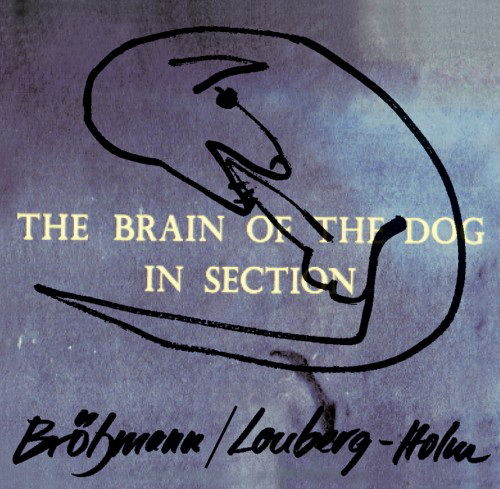 The Brain Of The Dog In Section by Peter Brotzmann / Fred Lonberg Holm
