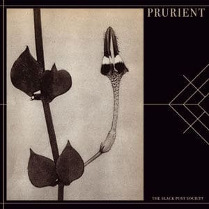 The Black Post Society by Prurient