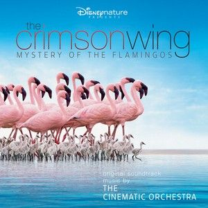 The Crimson Wing by The Cinematic Orchestra