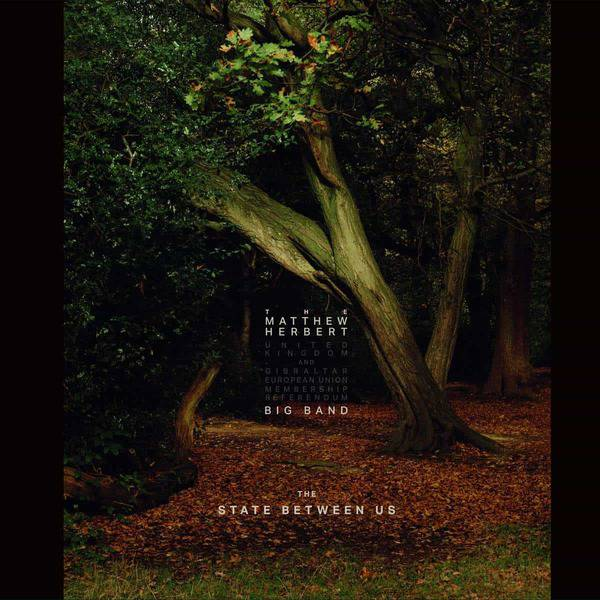 The State Between Us by Matthew Herbert Big Band