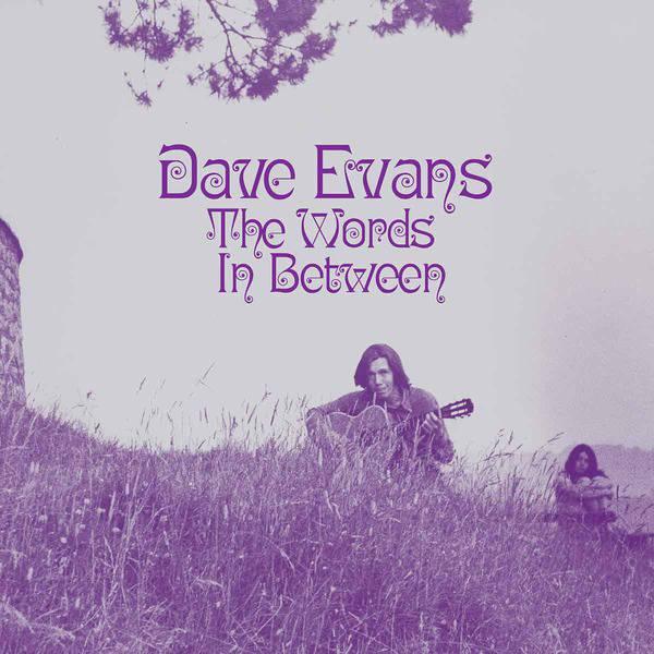 The Words Inbetween by Dave Evans