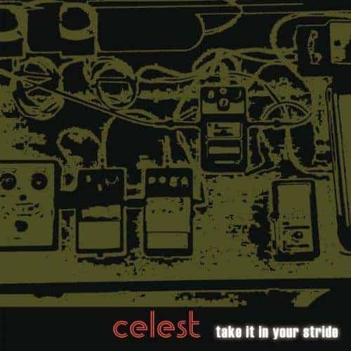 Take it In Your Stride by Celest