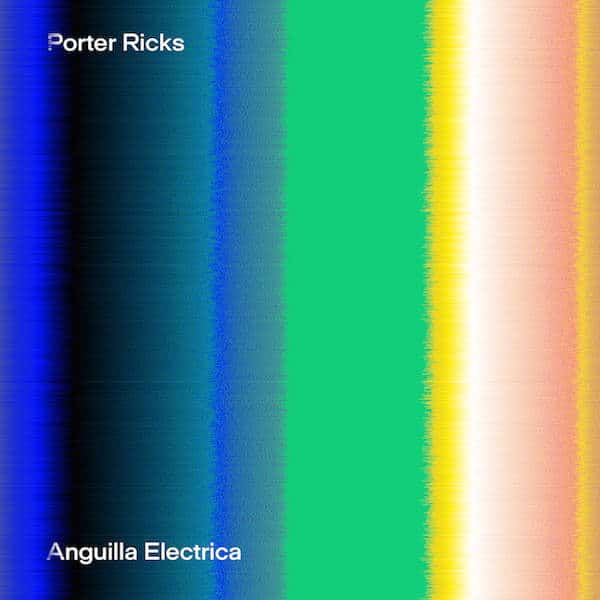 Anguilla Electrica by Porter Ricks