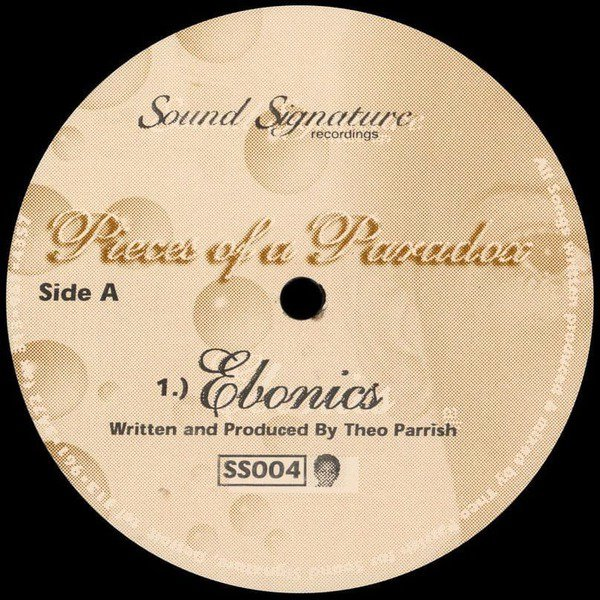 Pieces of a Paradox by Theo Parrish