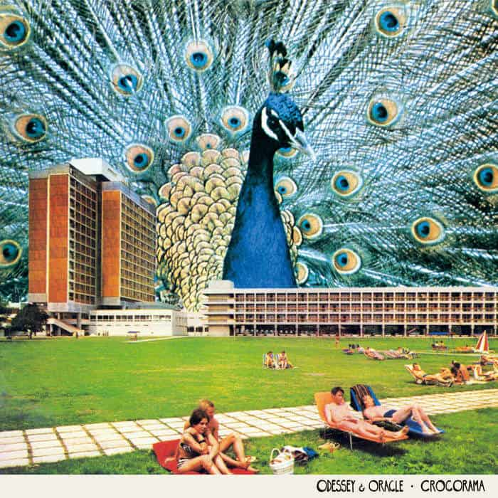 Crocorama by Odessey & Oracle
