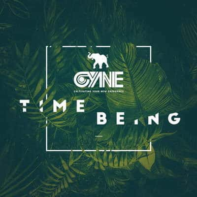 Time Being - Deluxe Edition by CYNE