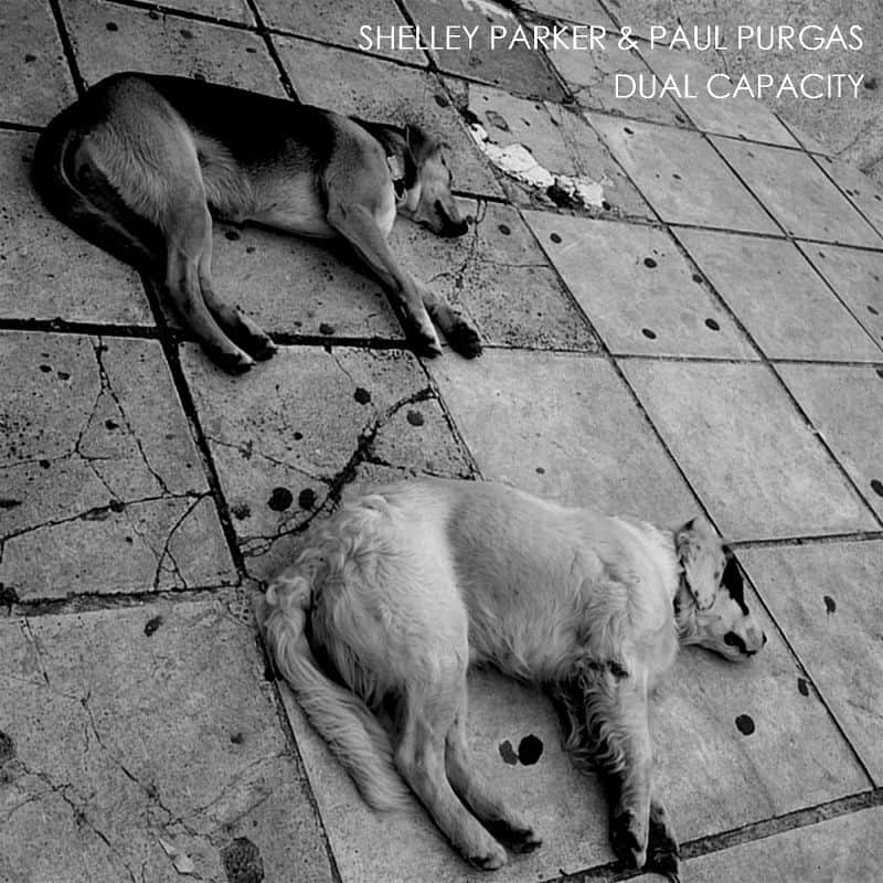Dual Capacity by Shelley Parker & Paul Purgas