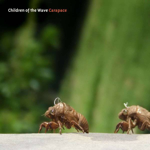 Carapace by Children of The Wave