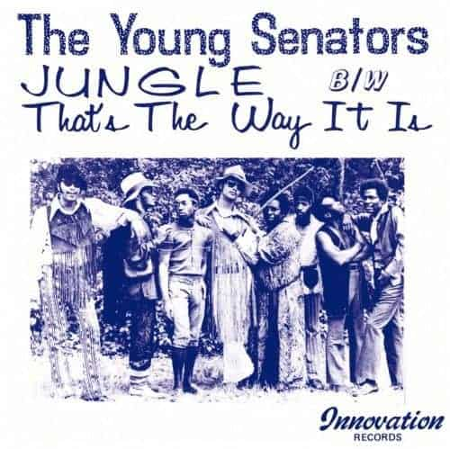 Jungle / That's The Way It Is by The Young Senators
