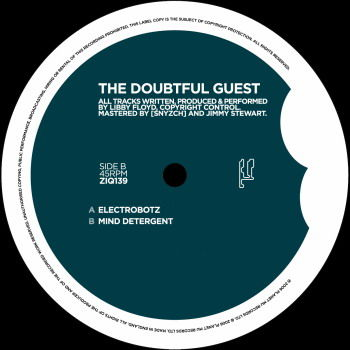 Electrobotz Remixes by The Doubtful Guest