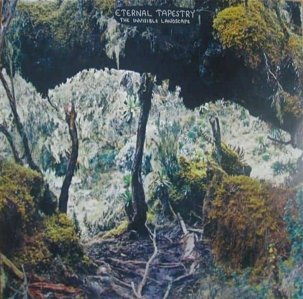The Invisible Landscape by Eternal Tapestry