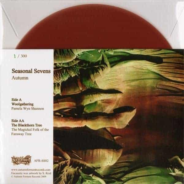 Split by Pamela Wyn Shannon/ The Magickal Folk of the Faraway Tree