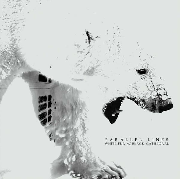 White Fur /// Black Cathedral by Parallel Lines
