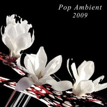 Pop Ambient 2009 by Various