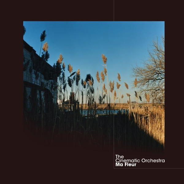 Ma Fleur by The Cinematic Orchestra