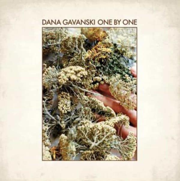 One By One by Dana Gavanski