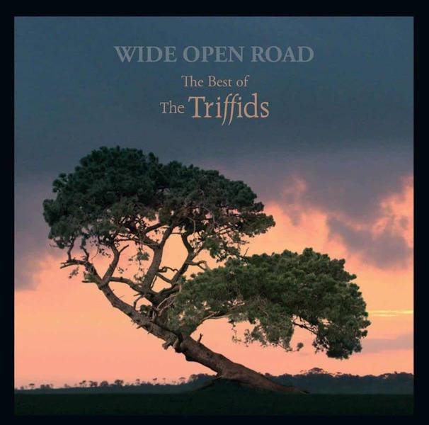 Wide Open Road... The Best of The Triffids by The Triffids