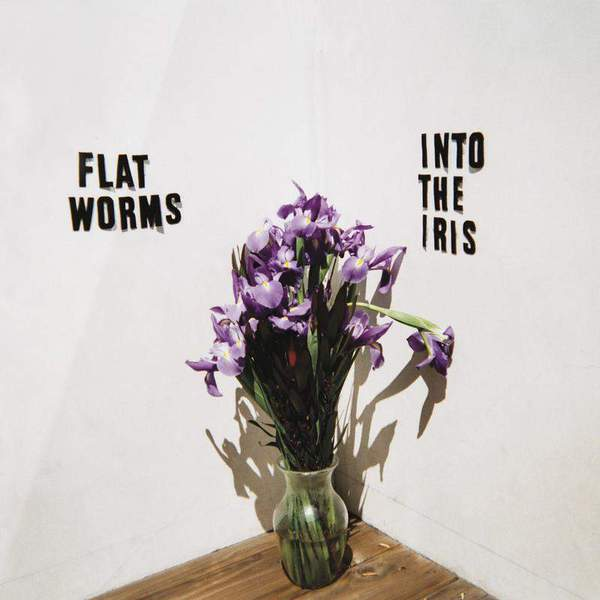 Into The Iris by Flat Worms