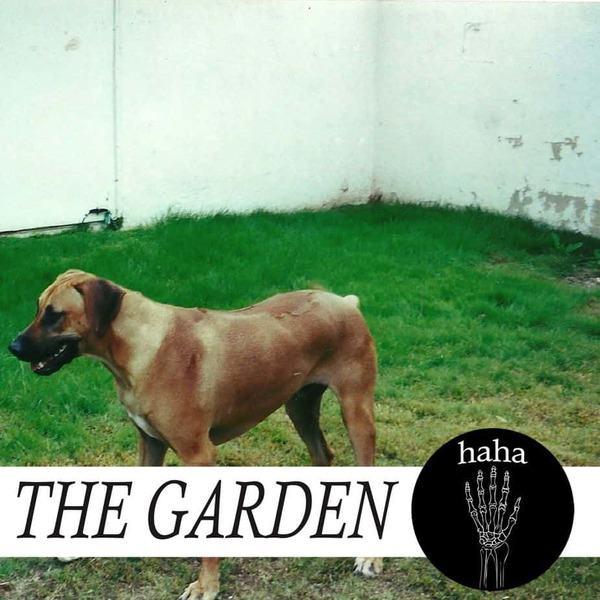 haha by The Garden