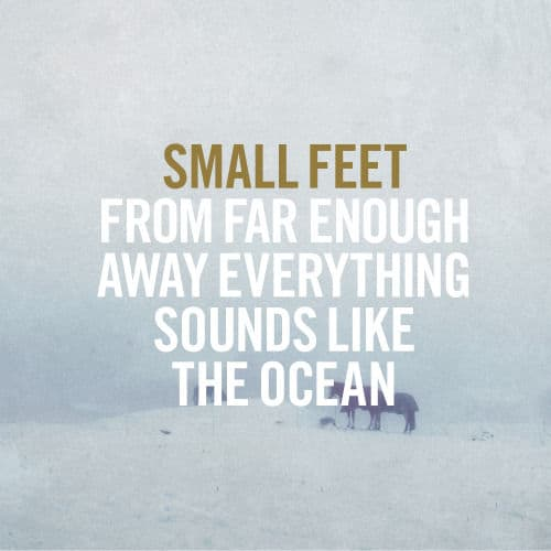 From Far Enough Away Everything Sounds Like The Ocean by Small Feet