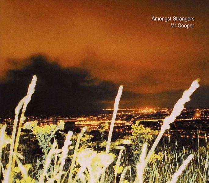 Amongst Strangers by Mr. Cooper