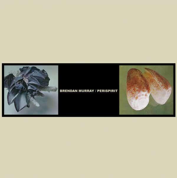 Split by Brendan Murray / Perispirit