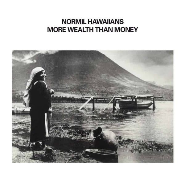 More Wealth Than Money by Normil Hawaiians