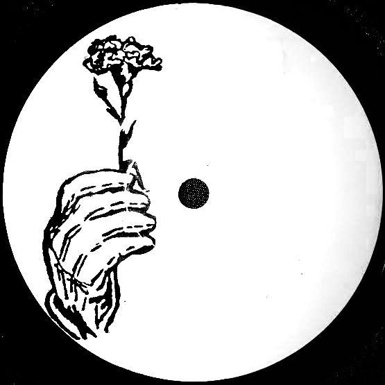 LP Sampler by Beau Wanzer