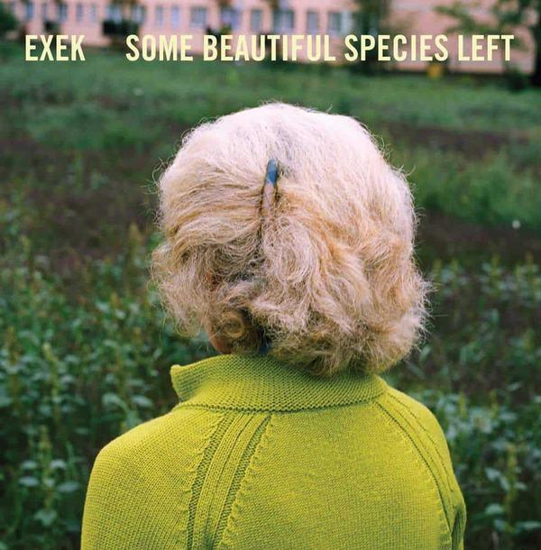 Some Beautiful Species Left by Exek