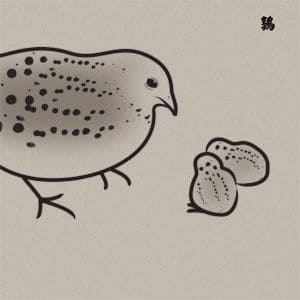 13 Japanese Birds Volume 5 by Merzbow