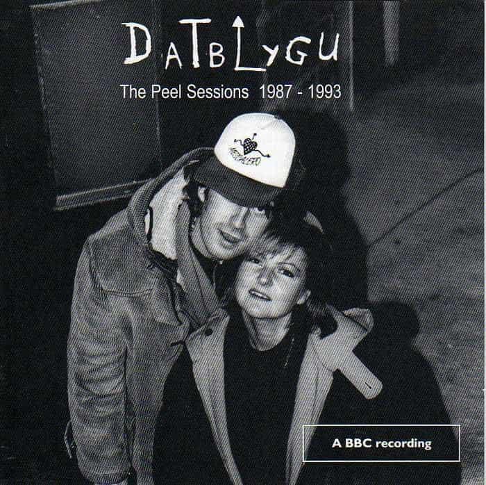 Peel Sessions 1987-1993 by Datblygu