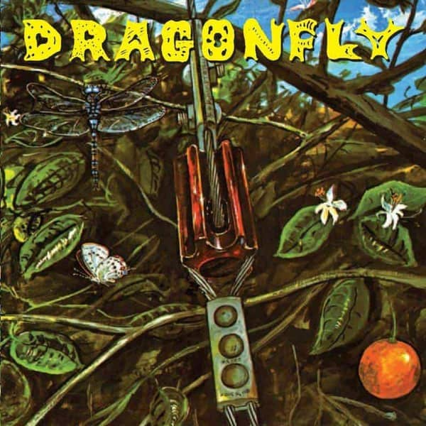 Dragonfly by Dragonfly