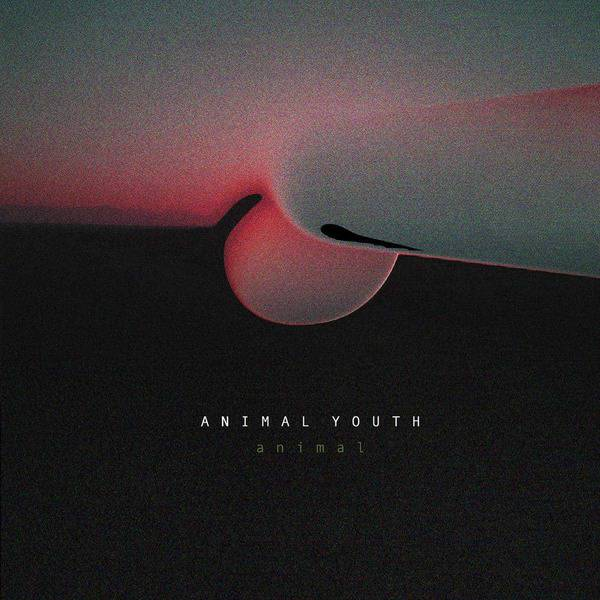Animal by Animal Youth
