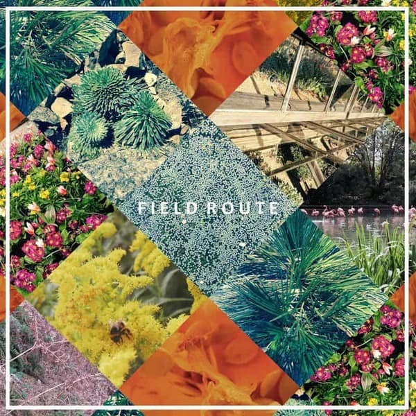 Field Route EP by Field Route