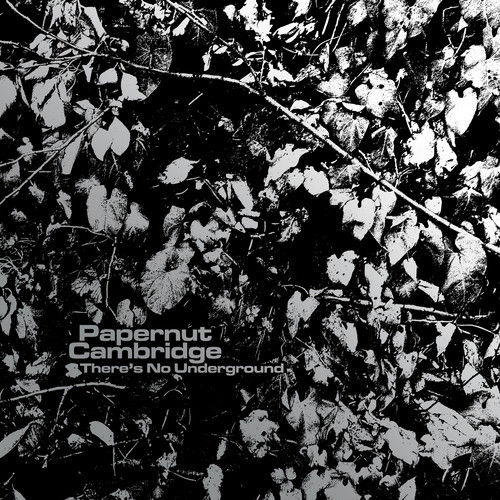 There's No Underground by Papernut Cambridge