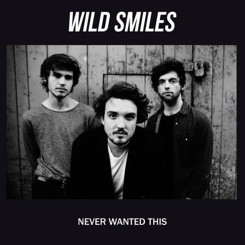 Never Wanted This by Wild Smiles