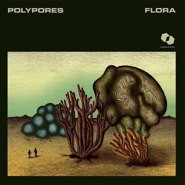 Flora by Polypores