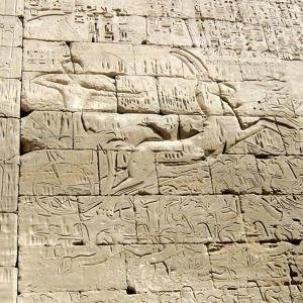 Egypt Strut by Sun Ra Arkestra