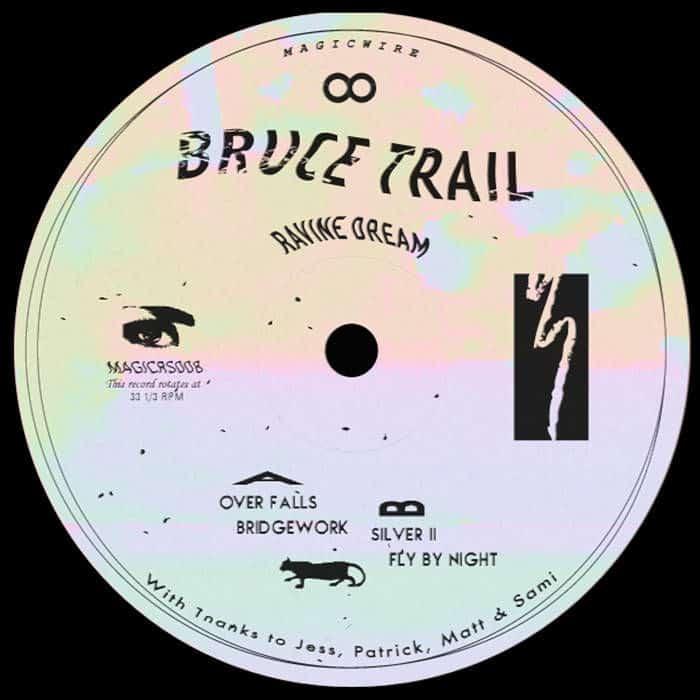 Ravine Dream by Bruce Trail