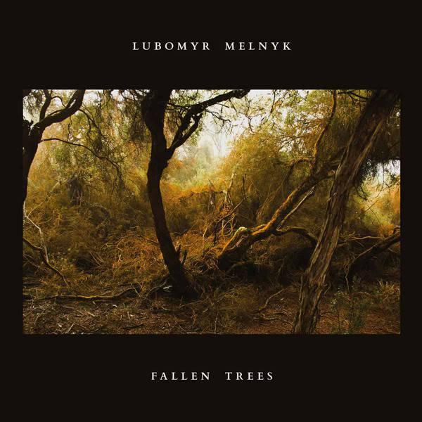 Fallen Trees by Lubomyr Melnyk