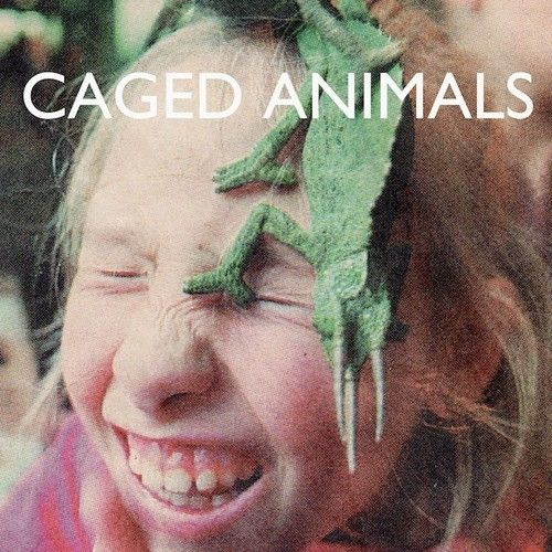 In the Land of Giants by Caged Animals