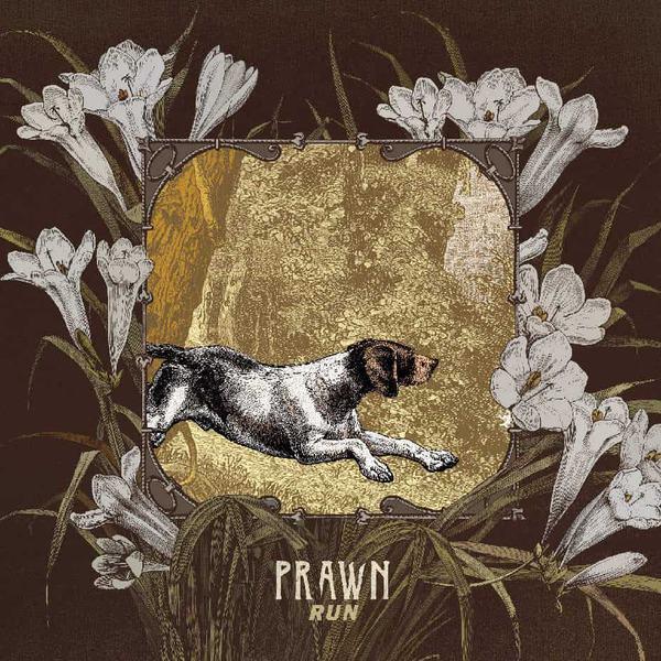 Run by Prawn