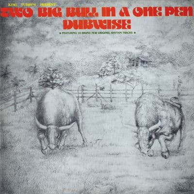 Two Big Bull In A One Pen Dubwise by King Tubby's