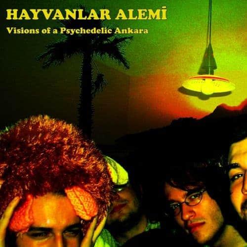 Visions Of A Psychedelic Ankara by Hayvanlar Alemi