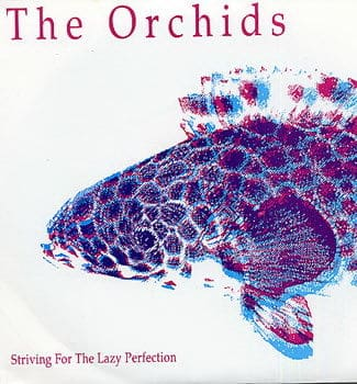 Striving for the Lazy Perfection + 2 by The Orchids / Bouquet / Crystal Garden