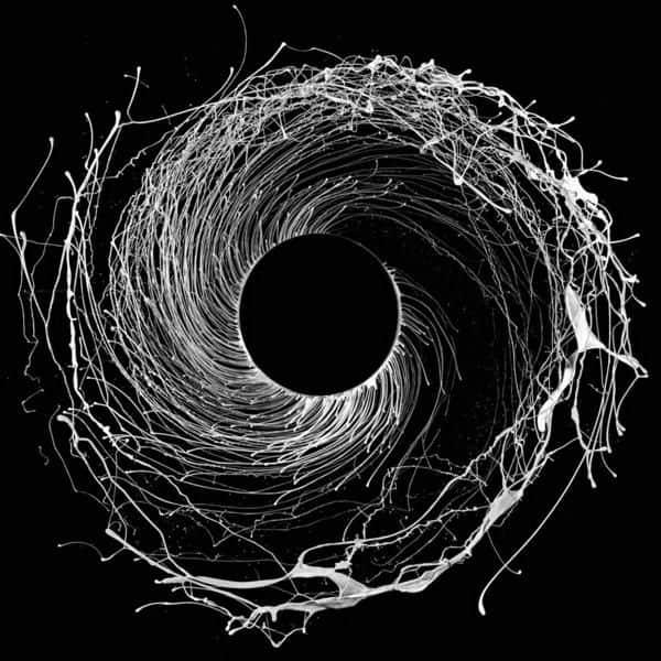 Dysnomia by Dawn Of Midi