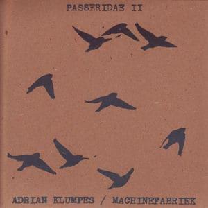 Passeridae II by Adrian Klumpes/ Machinefabriek