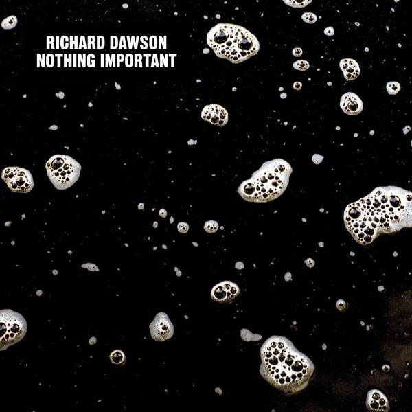 Nothing Important by Richard Dawson